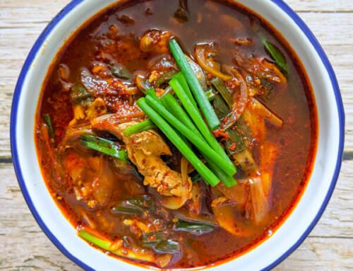 Dak Gae Jang / Soupe de poulet épicée coréenne / 닭개장